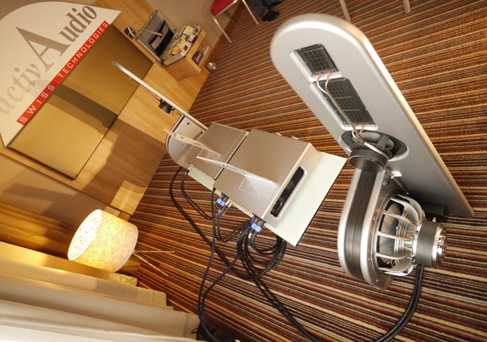 Is anyone using home built/designed speakers?   Steve